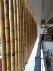 bamboo-interior wall